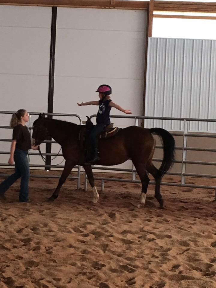 riding-lessons-hands-out