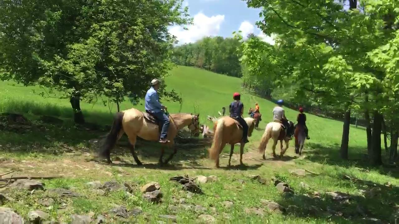 miner-hickory-horseback-riding-woods-to-open-sky-1